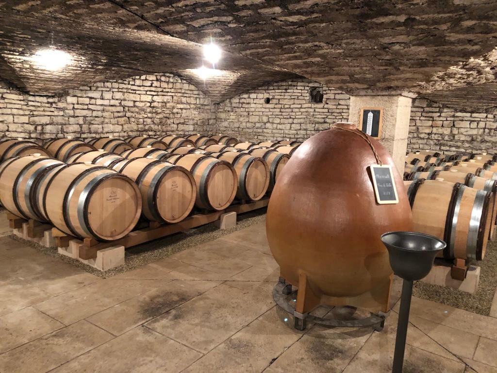 wijnkelder domaine Michelot te Meursault