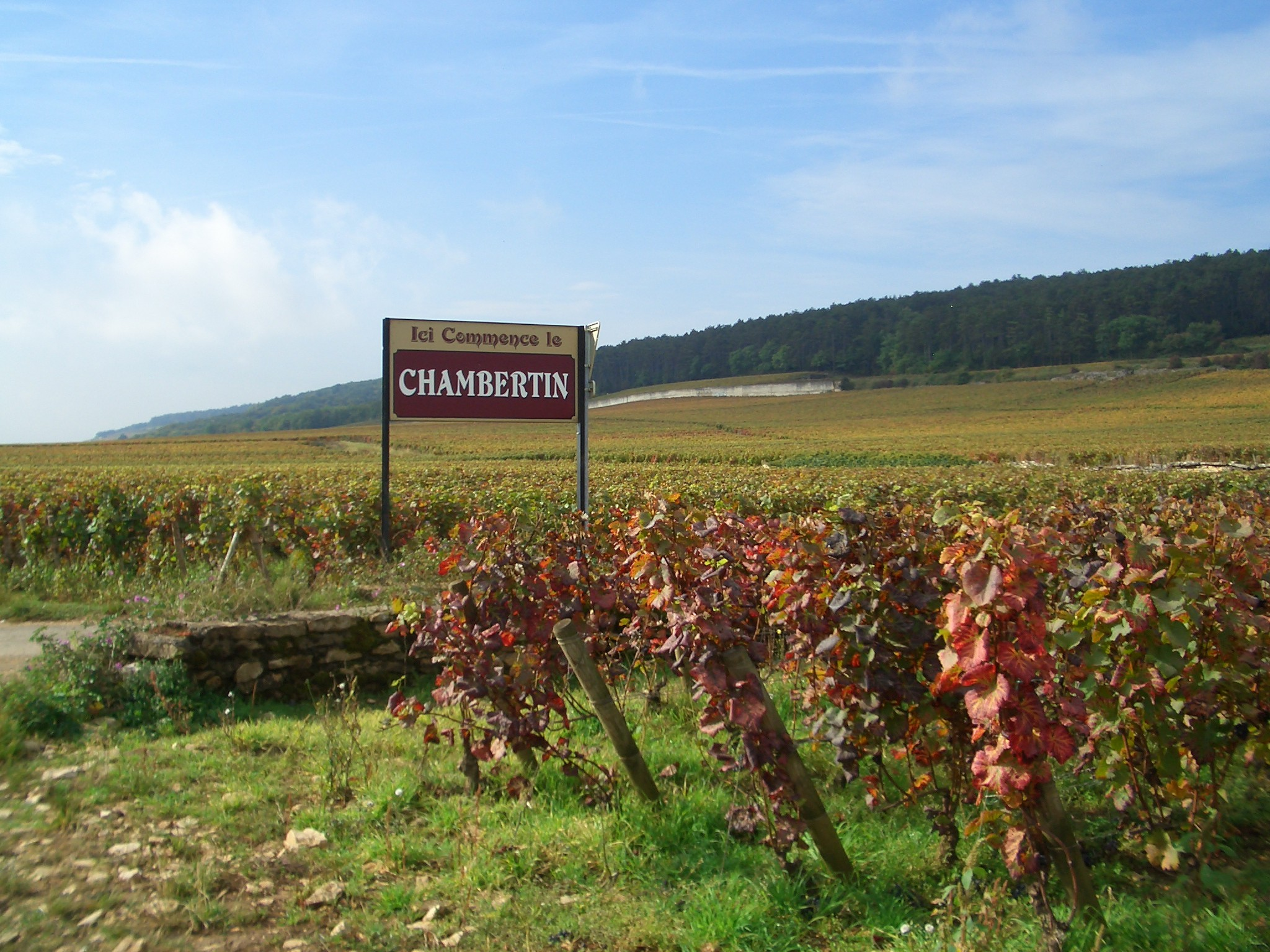 Grand Cru wijngaard Le Chambertin